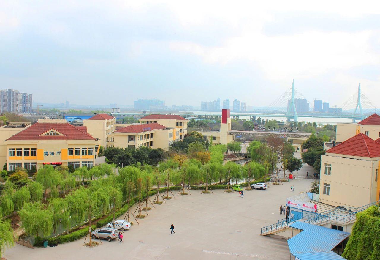 重磅 | 关于推荐西南科技大学城市学院转设为绵阳城市学院的公示